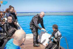 Cours PADI Dive Master de 10 jours avec certification
