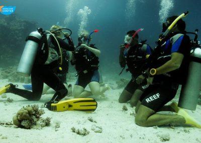 diving#star#oepn#water10