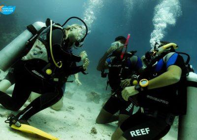 diving#star#oepn#water11