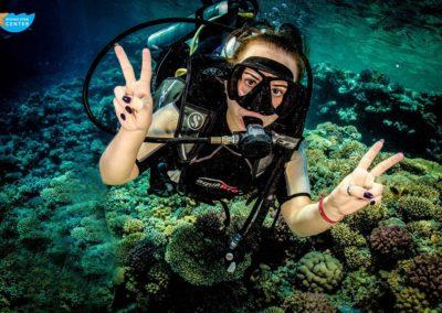 diving-star4oc