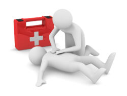 EMERGENCY FIRST RESPONSE 1 Day with Manual and Certification 205 Euro