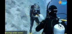 Deep Diver /2 Days