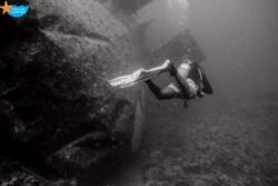 Wreck Diver /2 Days