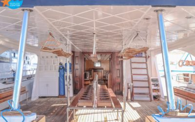 Daily diving boat – Renovation – 2020